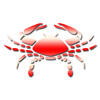 Zodiac-Signs-Cancer