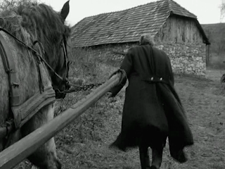 The Turin Horse, The Old Master Retreats, directed by Bela Tarr