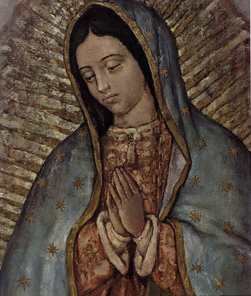 Watch more like Our Lady Of Guadalupe Tilma