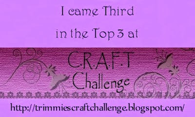 C.R.A.F.T. Challenge - Top 3 - Thank you ladies