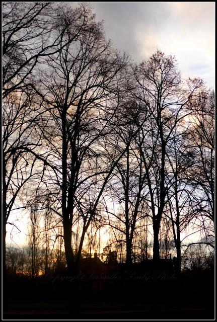 Winter sunset château de Versailles