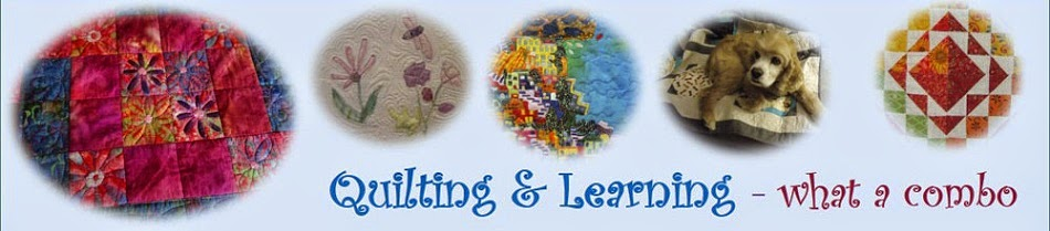 Quilting & Learning - What a Combo!