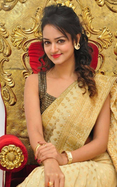 Shanvi Stills At Harinath Wedding Reception