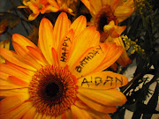 Aidan's Day Flower