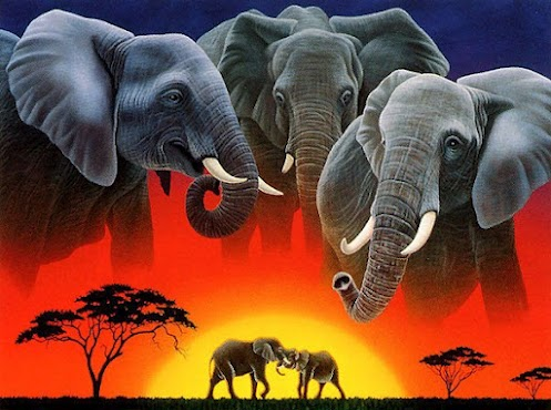 http://4.bp.blogspot.com/-BXrar58J43U/UDoPxpqsQII/AAAAAAAAArQ/z2qrAf1CmTk/s1600/African+elephants+the+most+beautiful+elephants+in+the+world+top+ten+worlds+most+dangerous+animals+animals+wildlife+beautiful+flora+and+fauna+beautiful+amazing+animal+images.jpg
