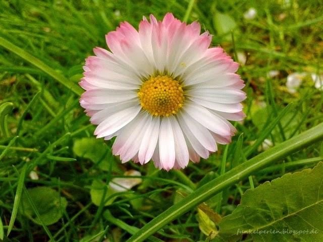 Frühlingsgefühle // funkelperlen.blogspot.de