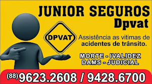 JUNIOR SEGUROS DPVAT