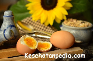 Manfaat kosumsi telur setiap hari bagi kesehatan