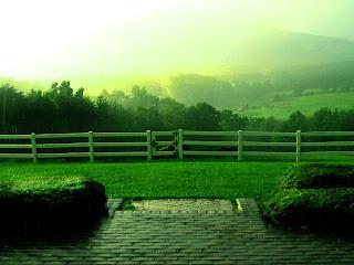 Wallpaper Rain