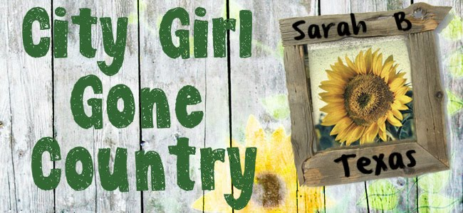 Sarah B Texas: City Girl Gone Country