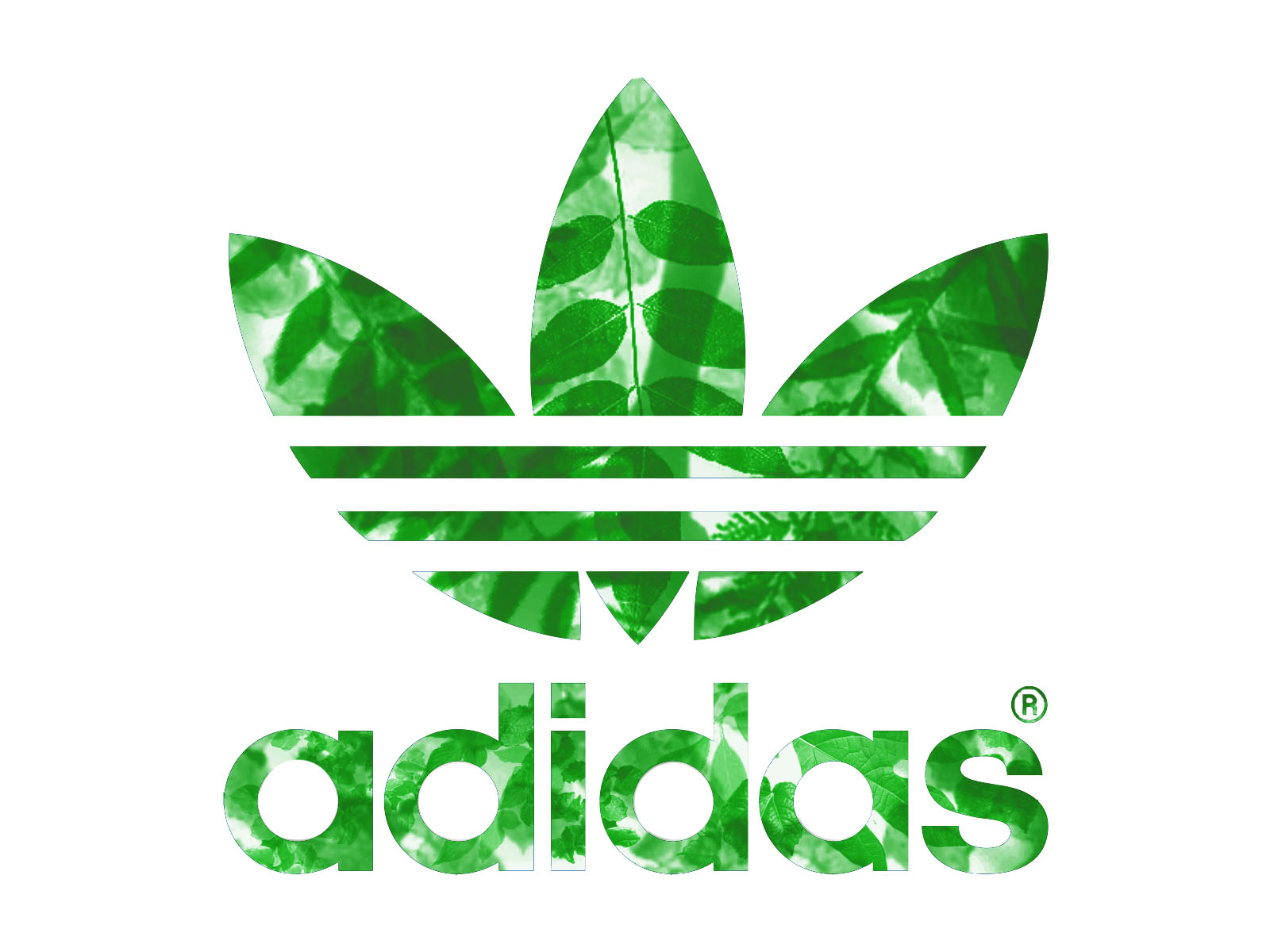 Adidas Group is comprised of three core companies: adidas, a manufacturer of footwear, apparel, and accessories; Reebok, a manufacturer of footwear, apparel, and accessories; and TaylorMade-adidas, a producer of Golf Equipment such as metalwoods, irons putters, golf .