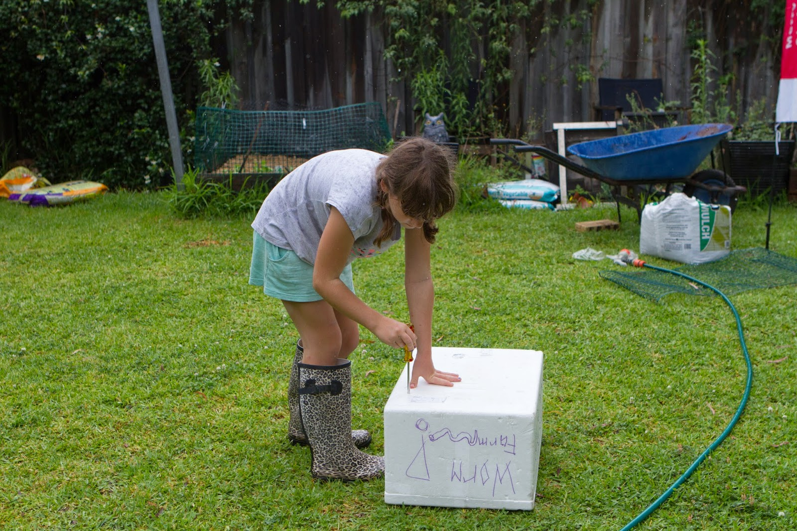 bunnings worm farm instructions