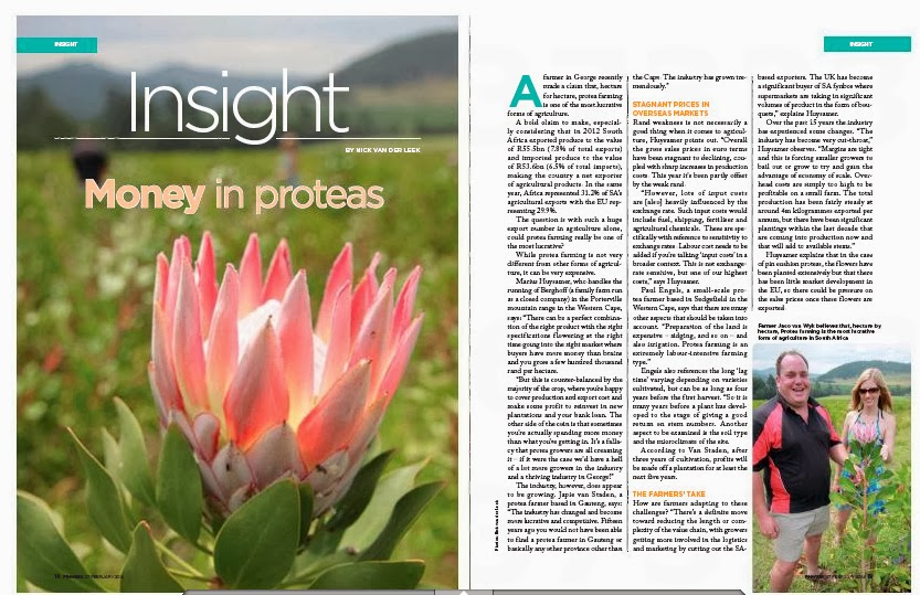 Nick van der Leek's Recent Work: Money From Proteas (3 pages published in Feb 2014 FINWEEK)