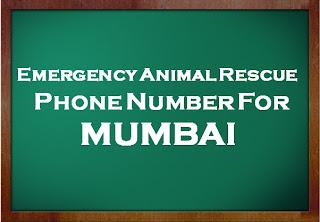 Animal Rescue Number Mumbai