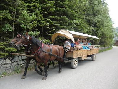 Coche de caballos subiendo a Morskie Oko y Czarny Staw en Zakopane, Polonia