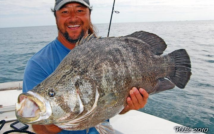 January Canaveral Tripletail Fishing Report with Capt. Scott Lum