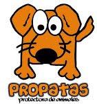 No compres, Adopta!!