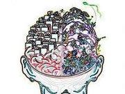 La marihuana estimula el crecimiento neuronal?