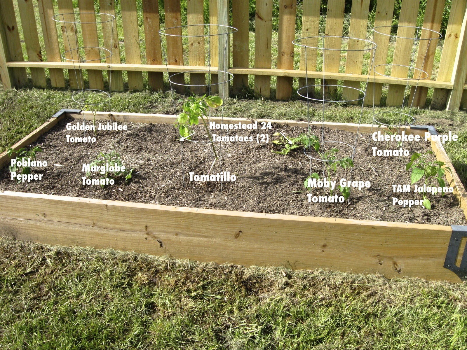 Two Men and a Little Farm RAISED BEDS LET THE GARDENING BEGIN