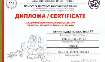Credit Card Nijinski Ballet BG Ch