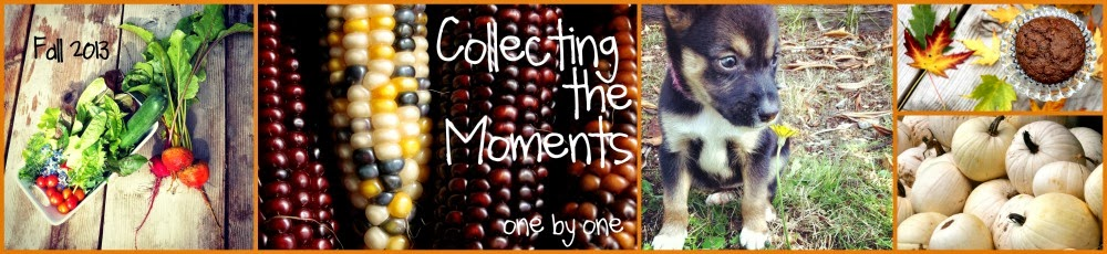 Collecting the Moments... one by one