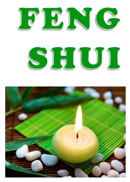 EBOOK: FENG SHUI | ENERGIA DE ESPAÇO