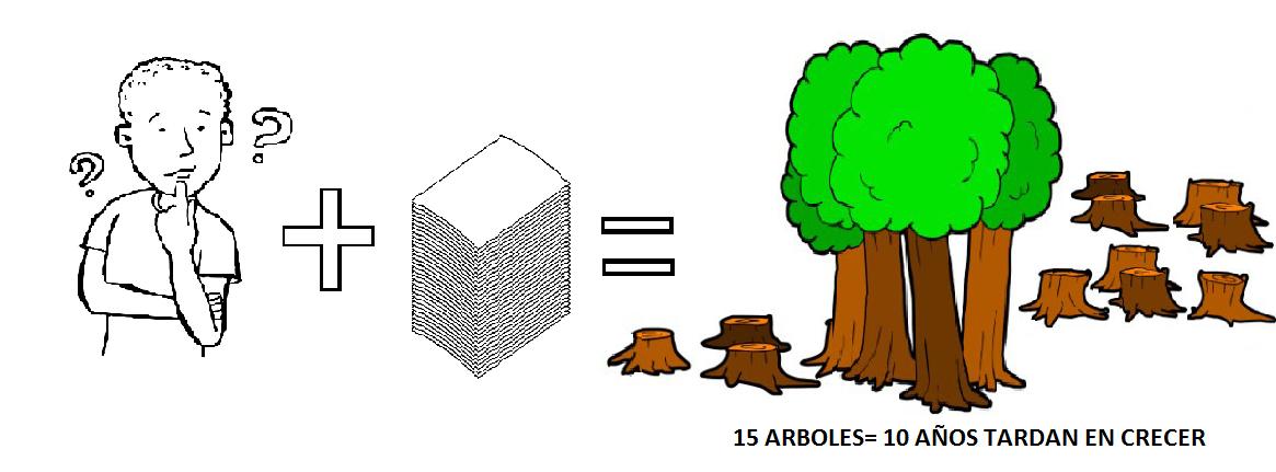 Salvemos un arbol cuanto papel consumes al mes for Cuanto mide un arbol