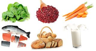 Daftar Makan Sehat agar Cepat Bisa Hamil dan Sehat