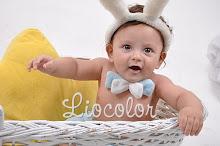 Olha aqui meu afilhado virtual, ele não é o coelhinho mais fofo que você já viu???