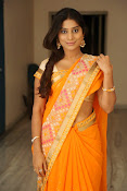Midhuna New photo session in Saree-thumbnail-6