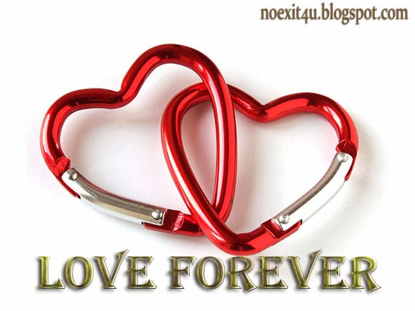 LOVE FOREVER WALLPAPER
