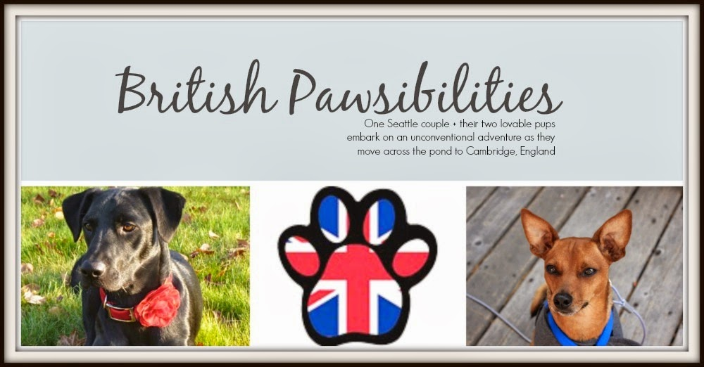 British Pawsibilities