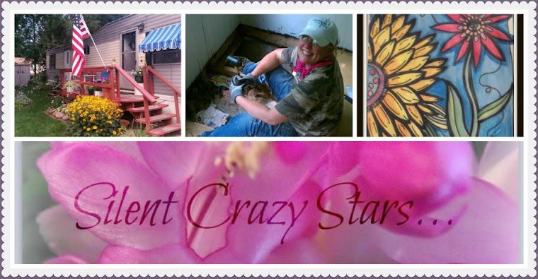 SilentCrazyStars