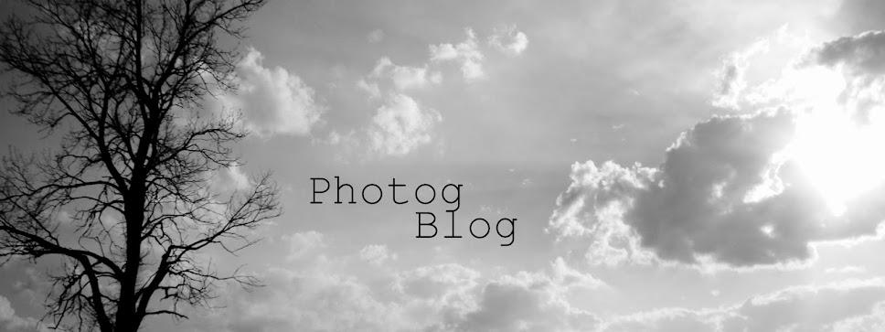 Photog Blog