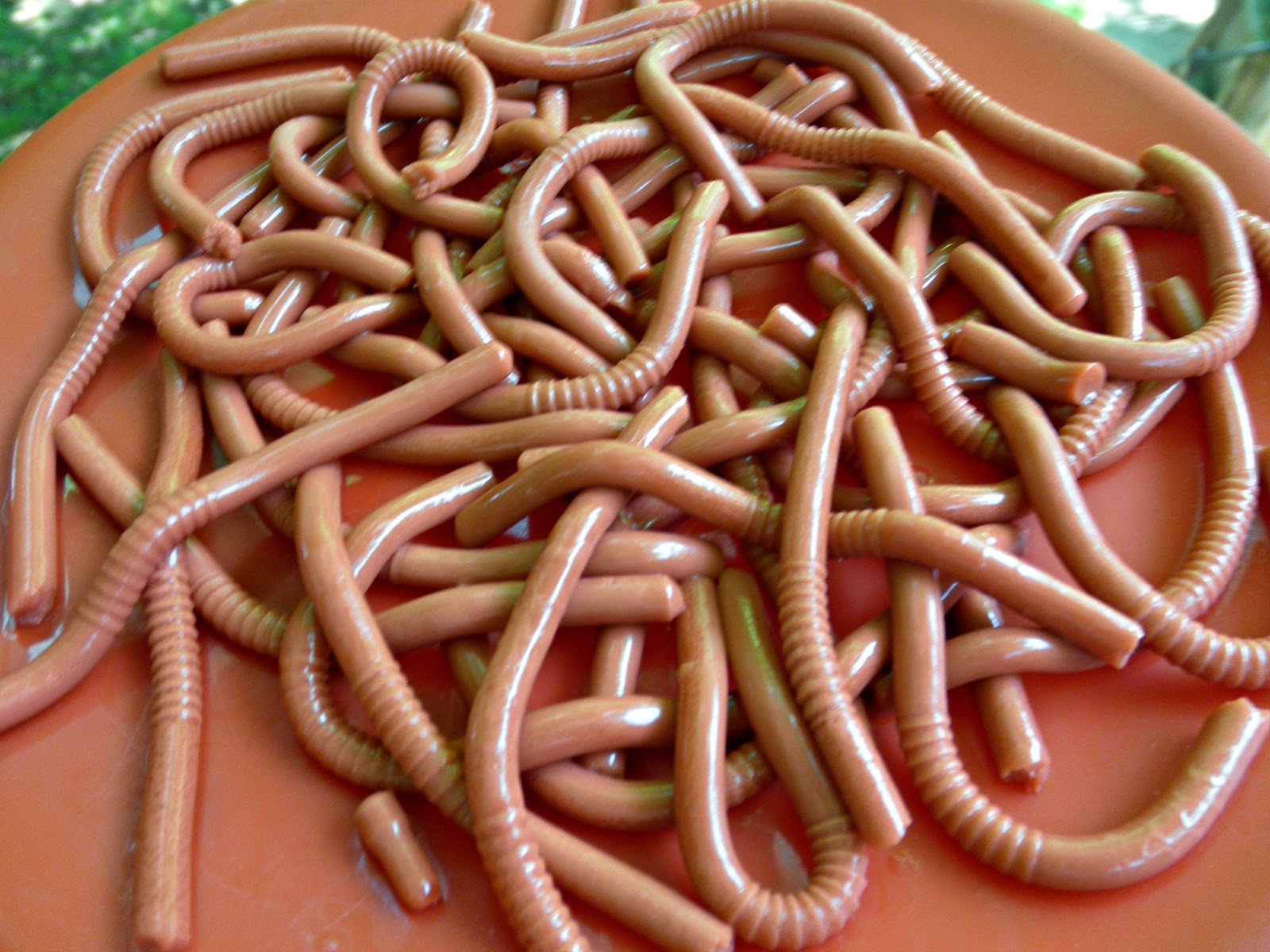 http://anestintherocks.blogspot.com/2014/05/gratituesday-lets-eat-worms-or-not.html