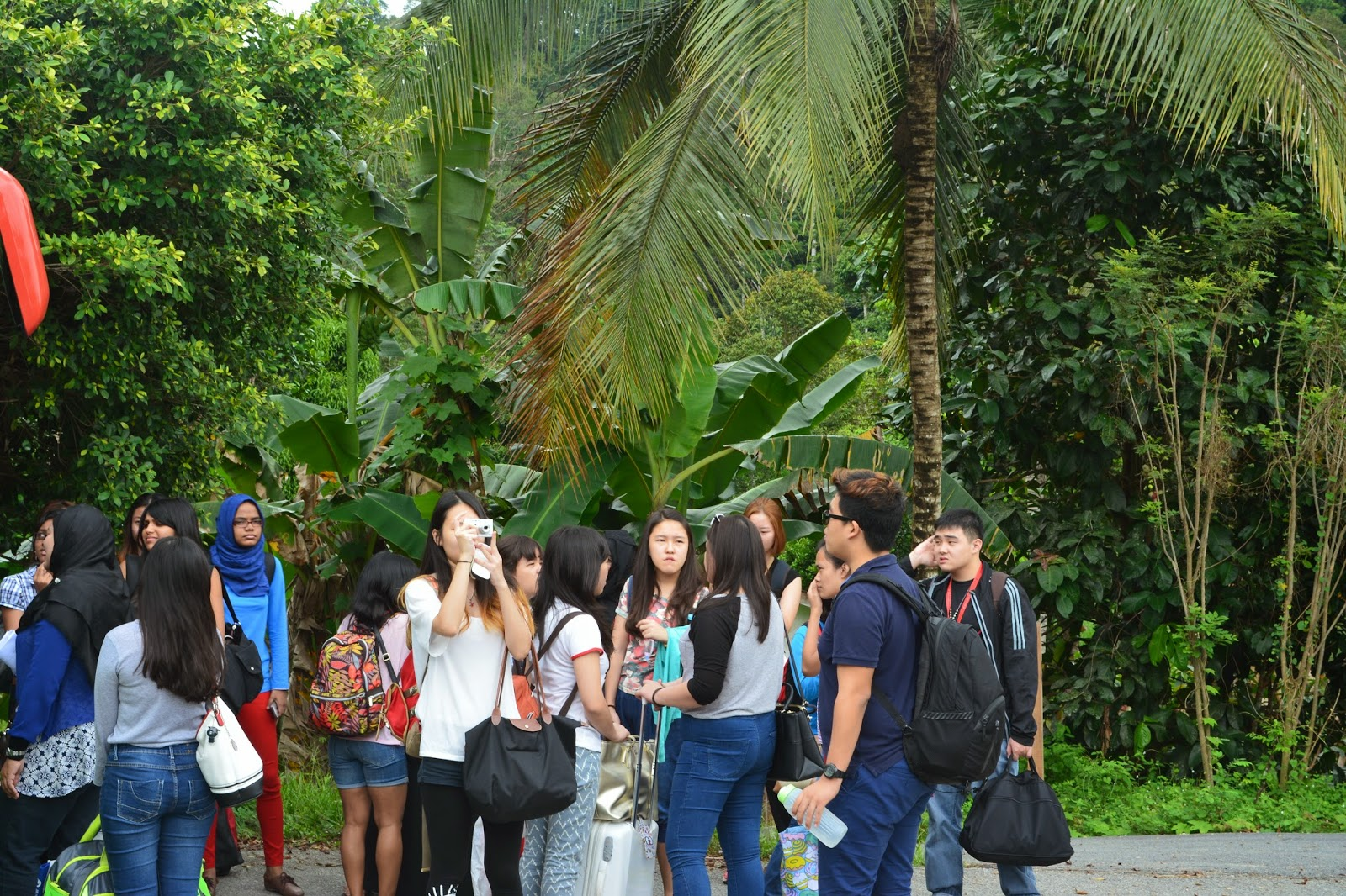 assessing the homestay program in malaysia Homestay tourism – a burgeoning sector in with the strengthening influx of travellers into malaysia a burgeoning sector in attracting more tourists.
