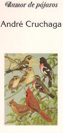 Rumor de Pájaros