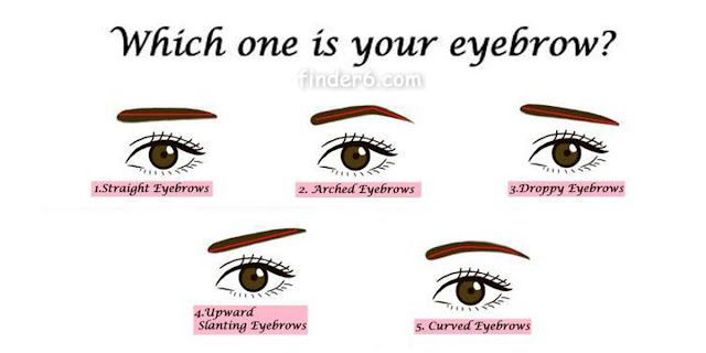 Your Eyebrows Say A Lot About Your Personality