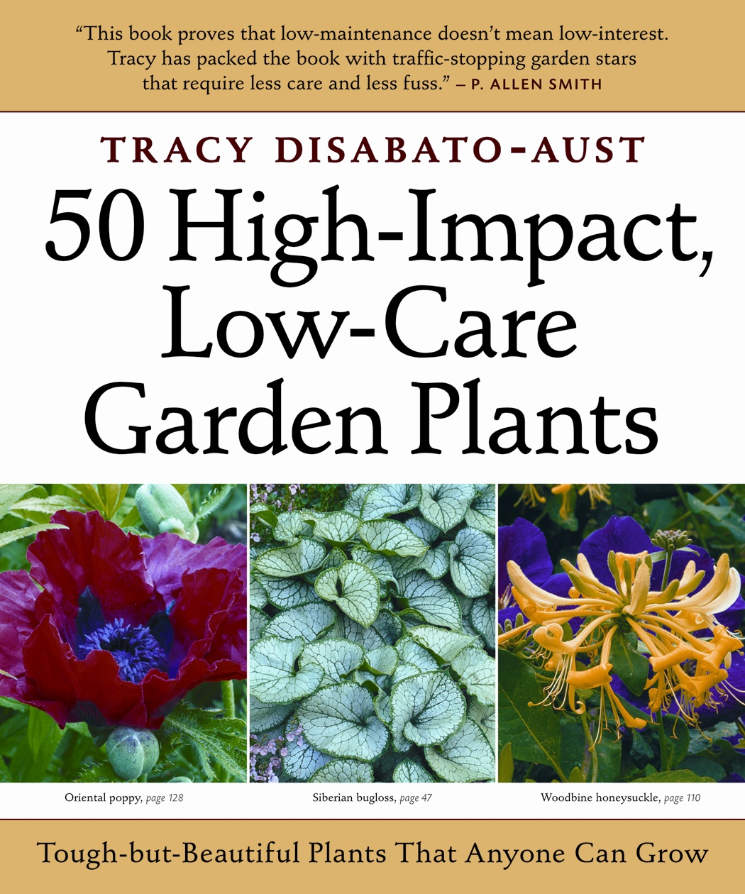 Sandy 39 s blog reckless gardener for Low care plants