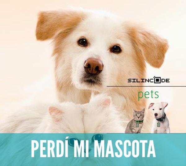 Expopet-Colombia-2015-tecnología-aliado-encontrar-mascota