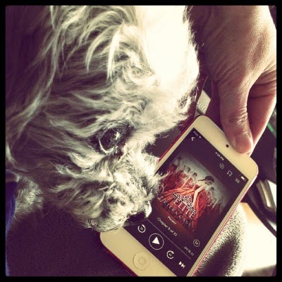 Murchie's face fills most of the frame. Directly behind him is a red-bordered iPod with The Elite's cover on its screen. The cover features a red-haired white girl wearing a rusty red ballgown. She is surrounded by mirrors.