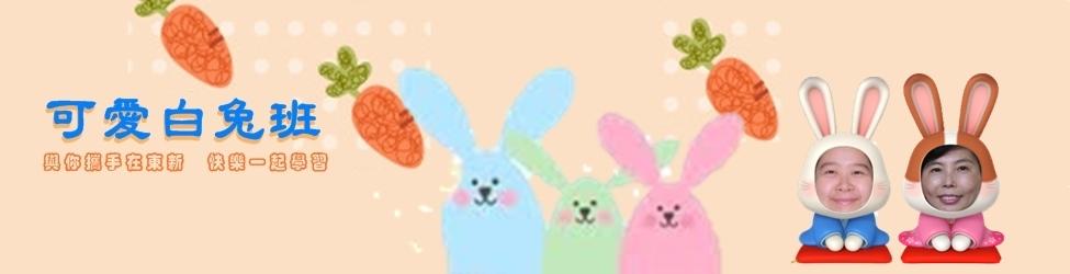 可愛白兔班