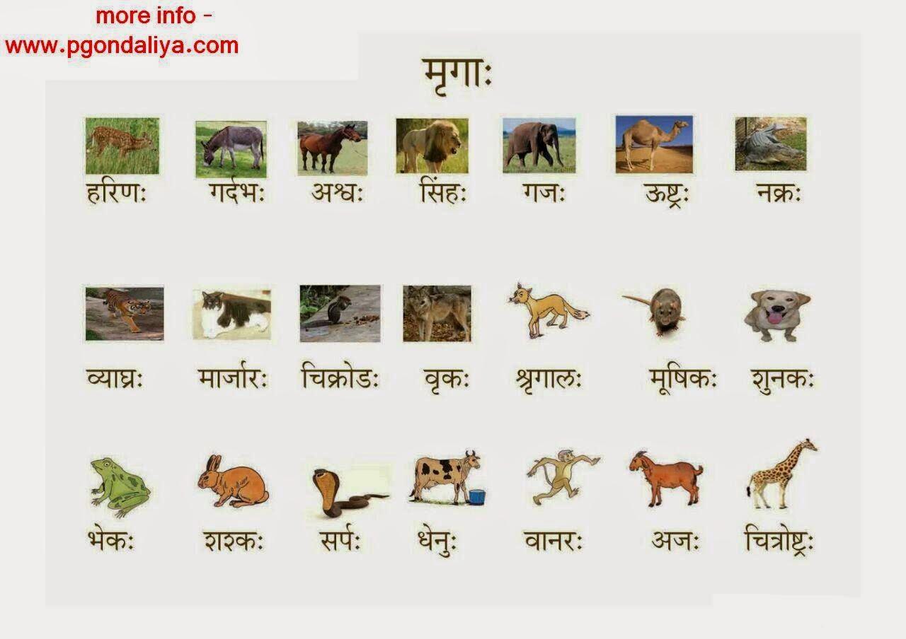 sanskrit essay on train