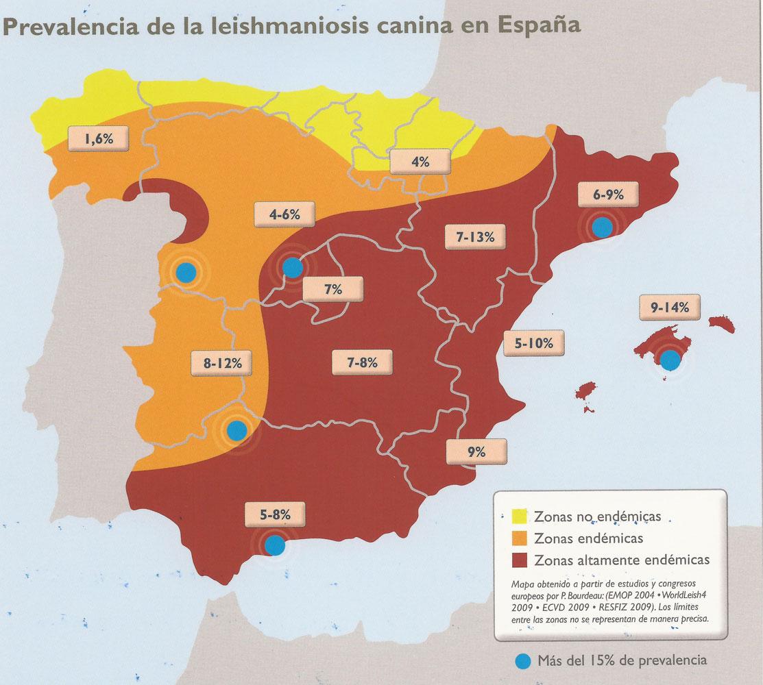 <strong>Prevalencia de la Leishmaniosis canina en España. En color rojo las zonas altamente endémicas.</strong>