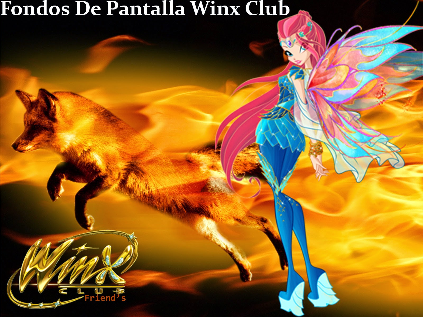 Winx Club Friends Fondos De Pantalla Winx Club