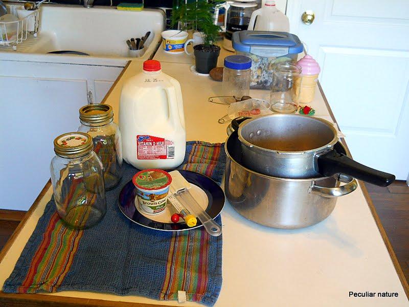 yoghurt making at home supplies