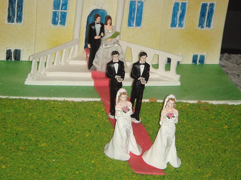 Matrimonio Mismo Sexo Biblia : Celtibético el tribunal constitucional y matrimonio
