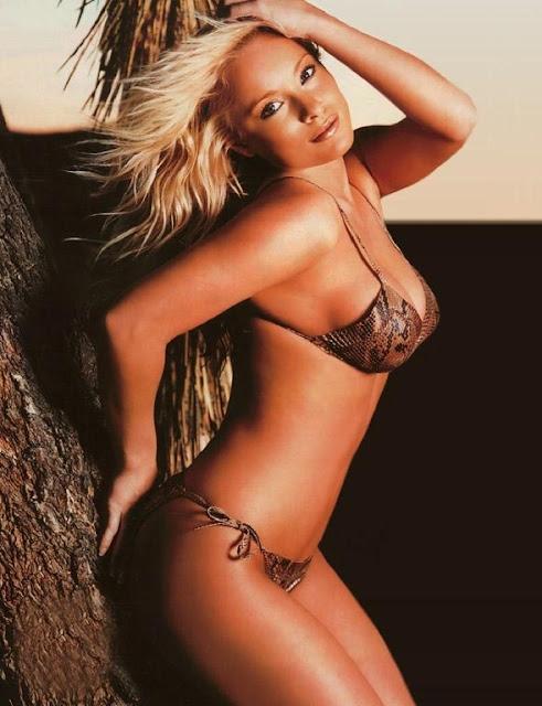 Jaime Bergman sexy in bikini