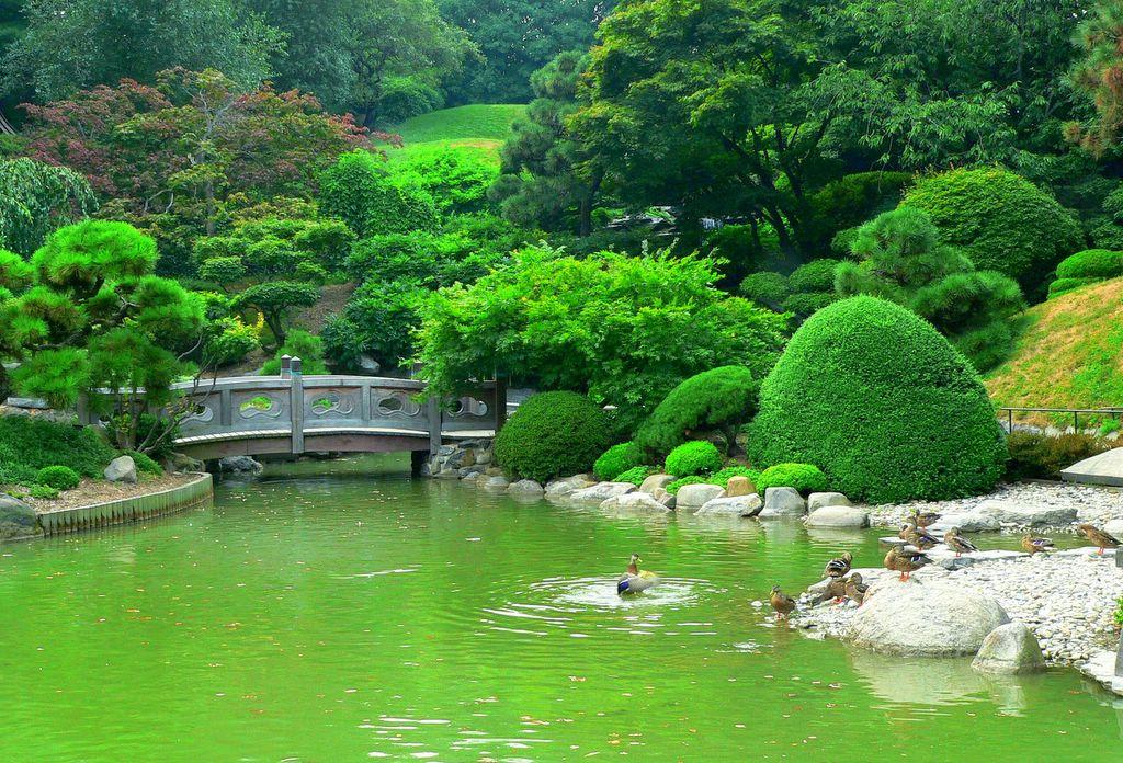 Se Joga Na Viagem Nyc New York Botanical Garden