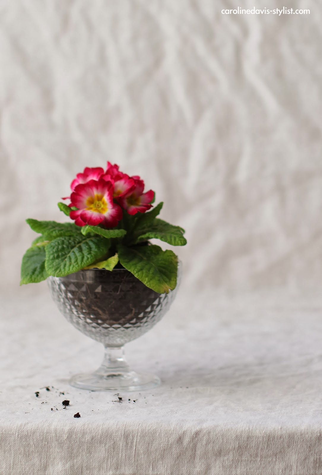 carolinedavis-stylist.com, styling details, flowers, trend-daily blog